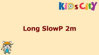 グッド・トイ紹介 Long SlowP 2m