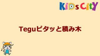 グッド・トイ紹介 Teguピタッと積み木